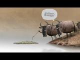 Прикольный мульт про антилоп